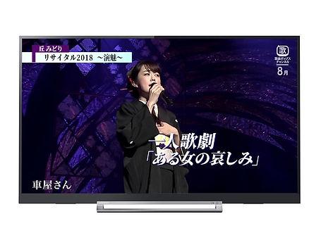 TOSHIBA-TV2.jpg