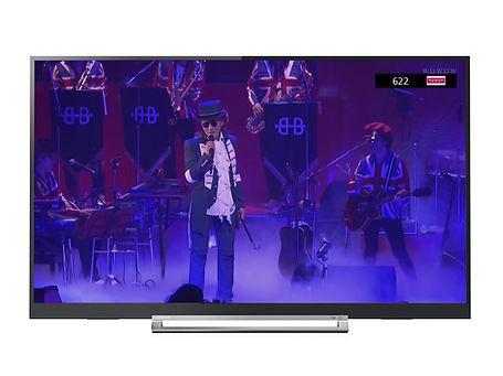 TOSHIBA-TV14.jpg