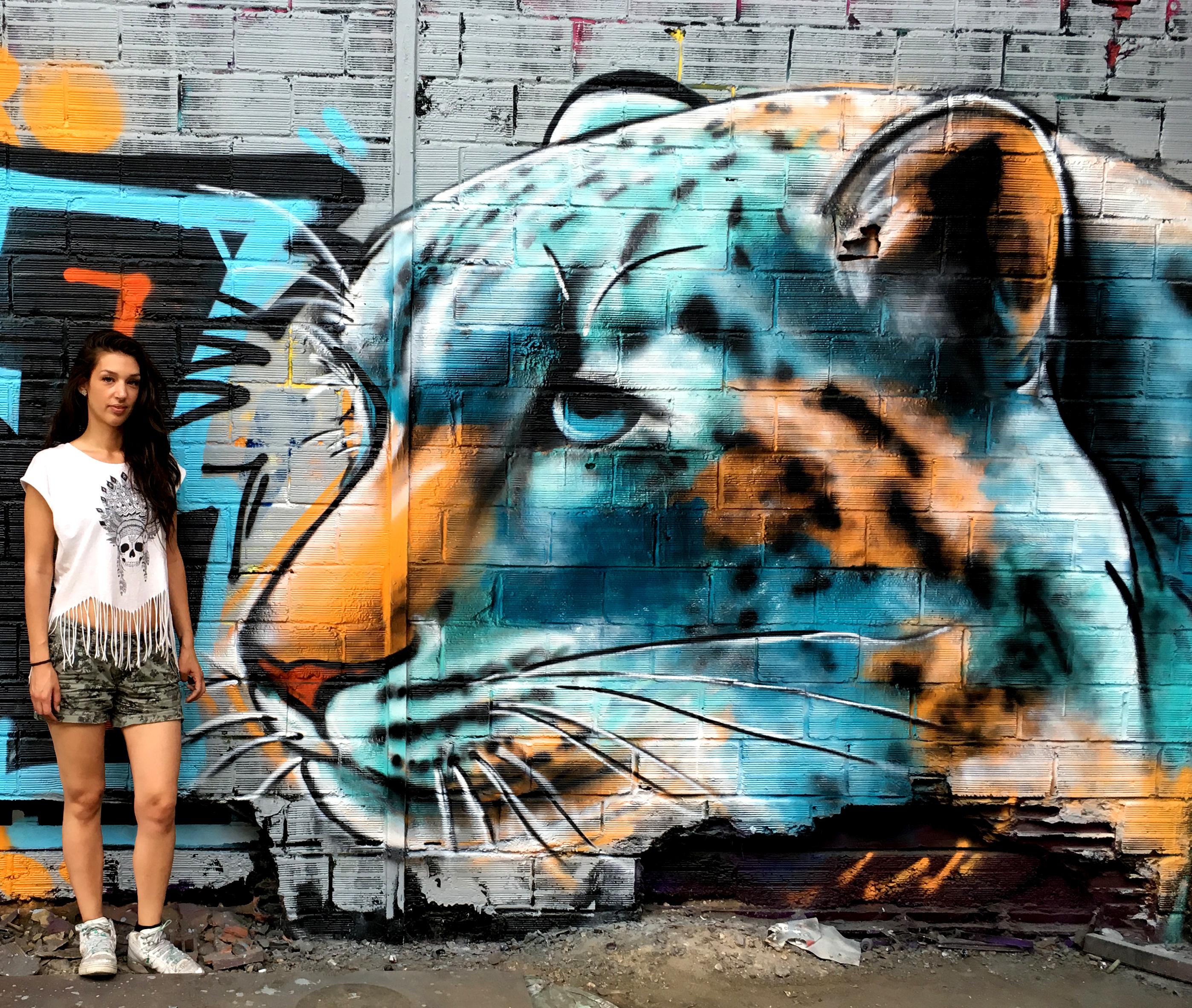 graffiti léopard des neiges