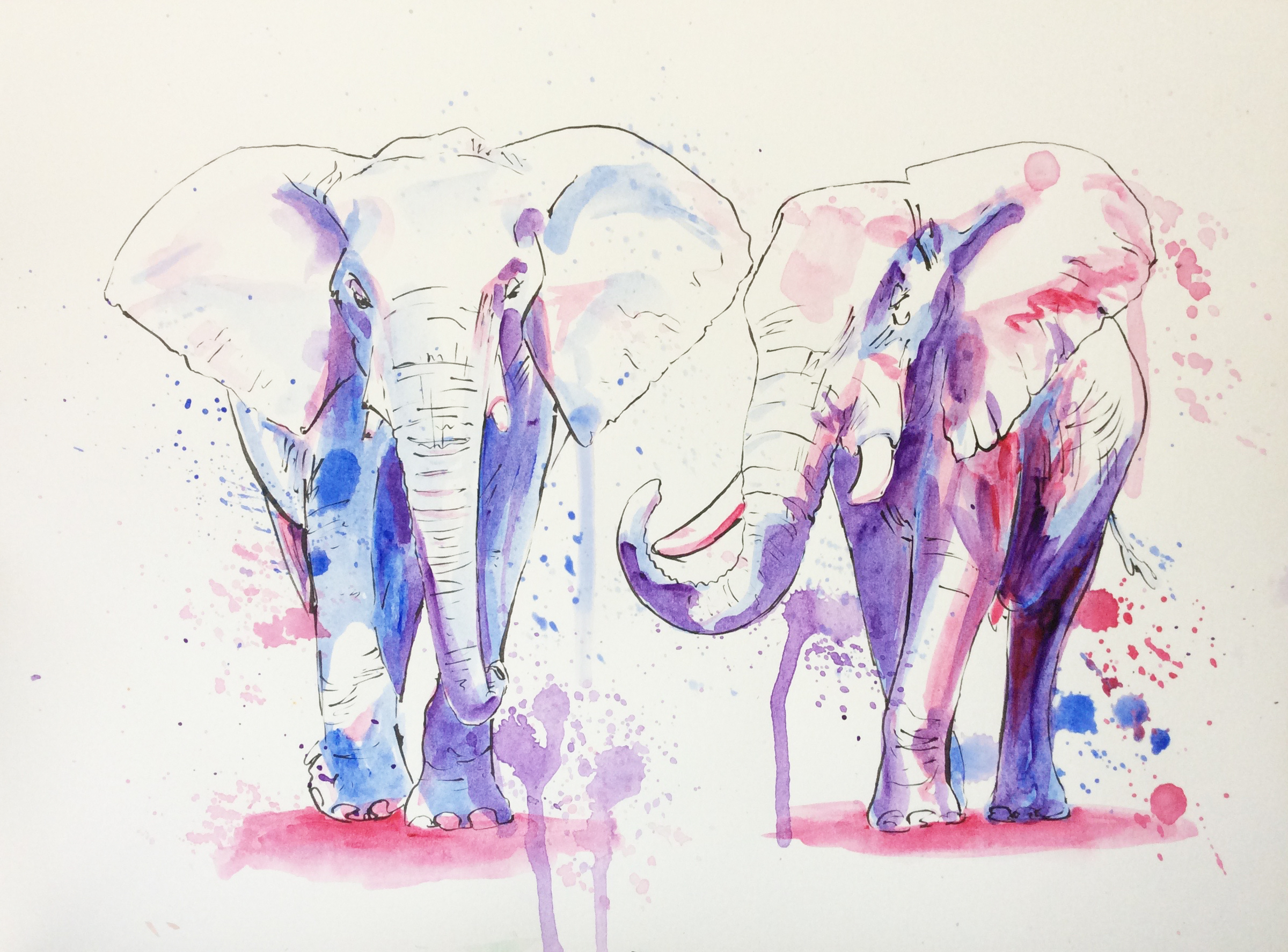 elephants à l'aquarelle