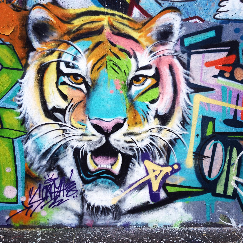 Tigre graffiti