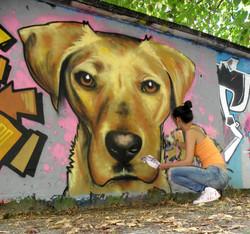 graffiti chien