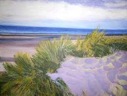 bray dune