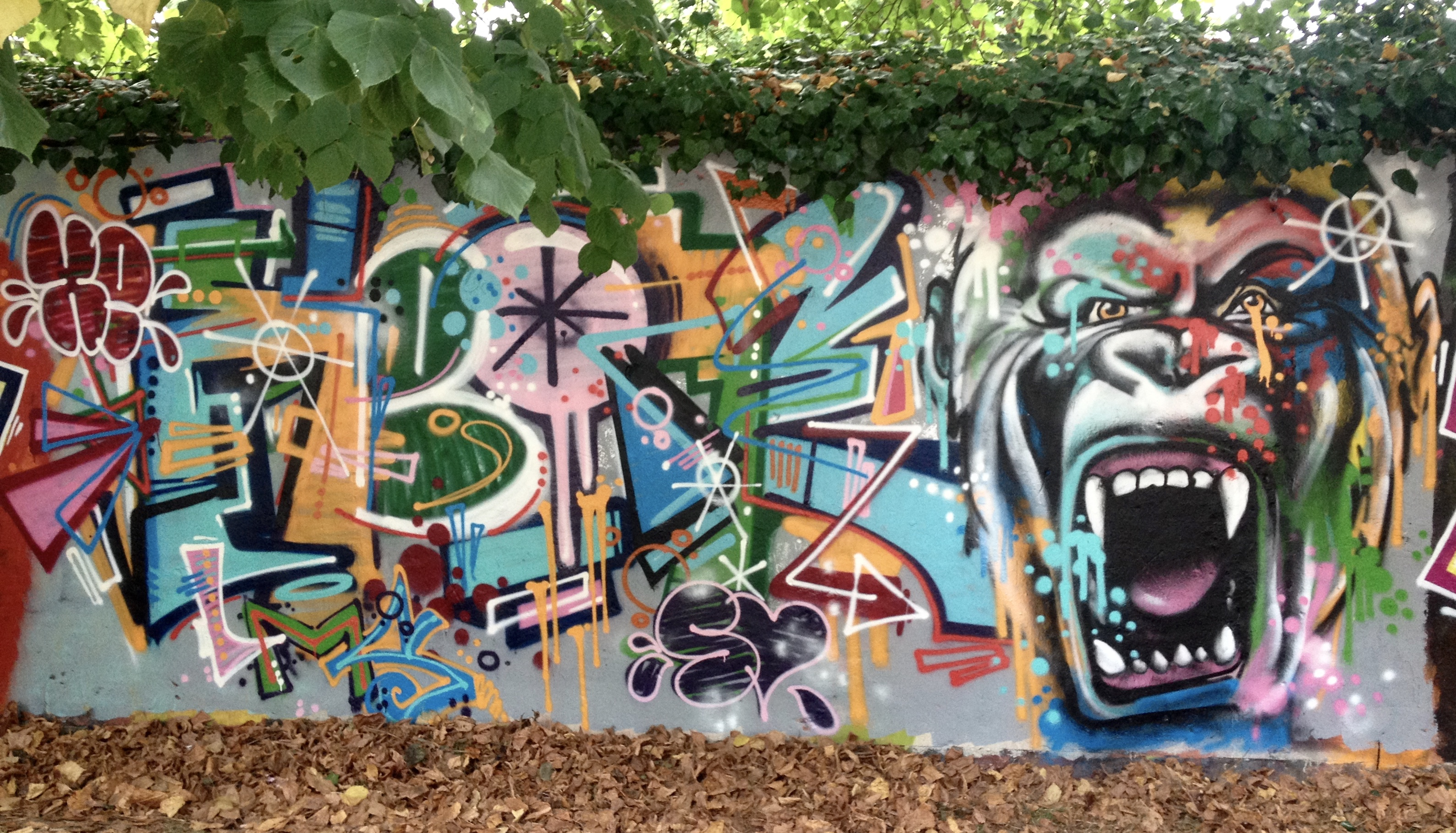 graffiti gorille