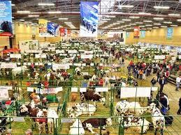Feria pecuaria