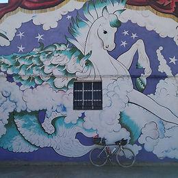 Apunts per un viatge en bici