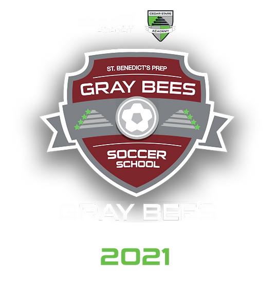 CSA-GRAY-BEES-CAMP-lockup.png