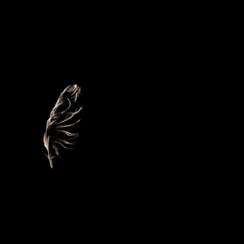 White Silent Motionless 3