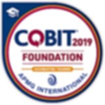 cobit019.png