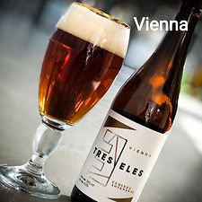 Vienna_edited.jpg
