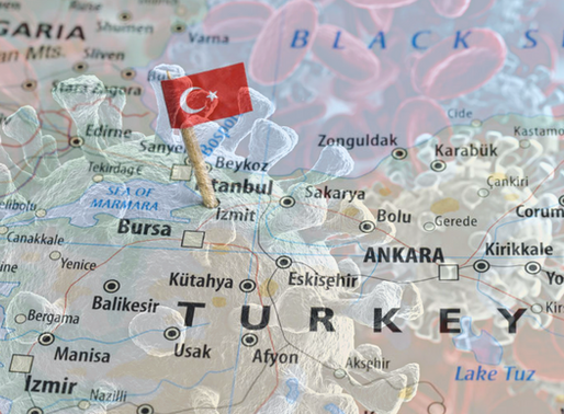 Webinar Series: Exploring the Impact of COVID-19 on Turkey