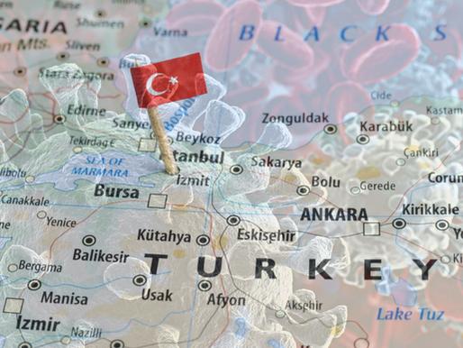 Webinar Series: Exploring the Impact of COVID-19 on Turkey