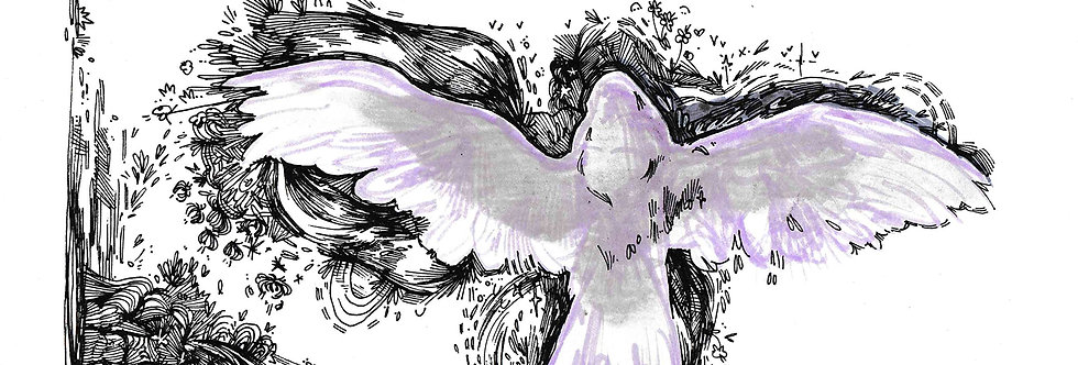irl angel aka bird