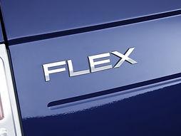Flex_edited.jpg