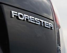 Forester.jpg