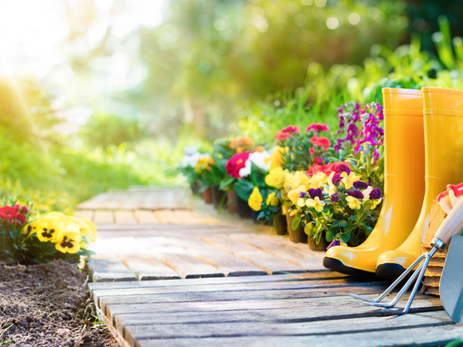 7 tips to prevent back pain when gardening