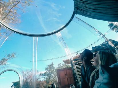 Clear dome encasement