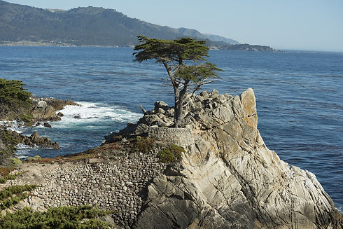 pebble-beach-2055727_1920.jpg
