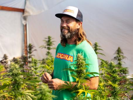 Oregon Cannabis Growers| Meet Massive Seeds
