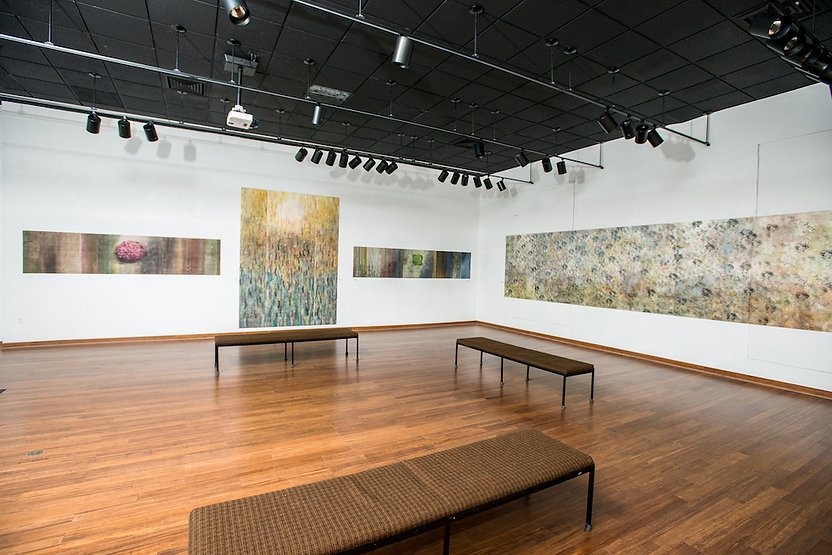 Installation View Joan Derryberry Art Gallery, 2014 Tennessee Technological University, Cookeville, Tennessee