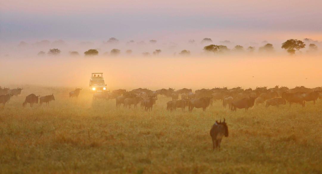 Four Seasons Serengeti-116.1.jpg