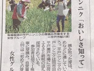 にんにくの芽摘み体験開催しました👍4月7日快晴❕長崎新聞に取材して頂きました。