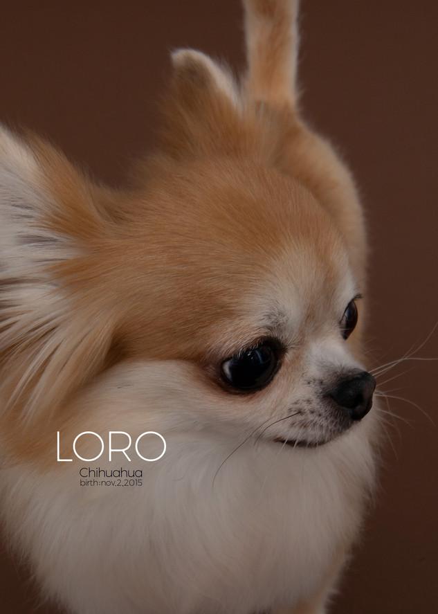 Thank you dear Loro