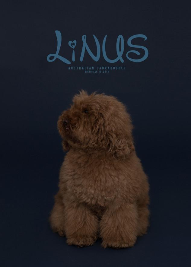 Thank you dear Linus