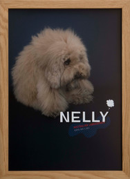 Thank you dear NELLY !