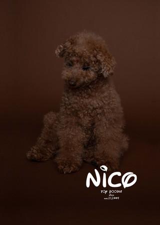 Thank you dear Nico