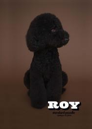 roy_portrait.artboad.jpg