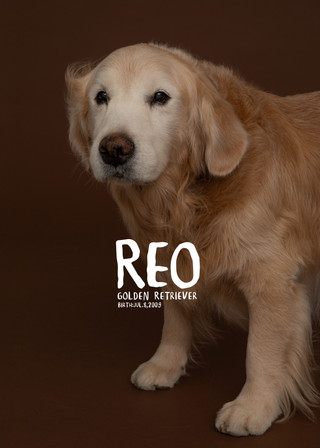 Thank you dear Reo