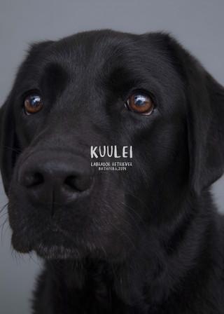Thank you dear Kuulei