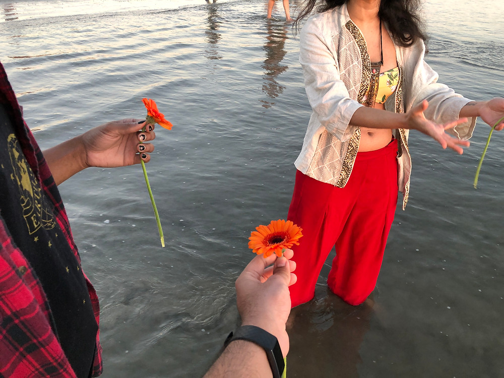 A picture of three queer/trans South Asian/Black people standing in ankle ocean water. Each is holding an orange flower. You can only see their hands/torsos.