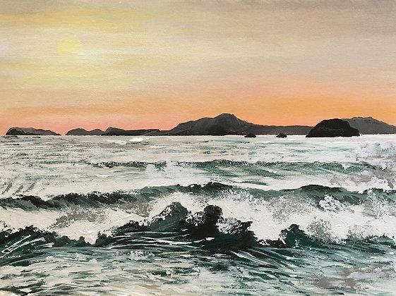 "Apricot Mist and Spray"" Framed Acrylic - Jill Jones"