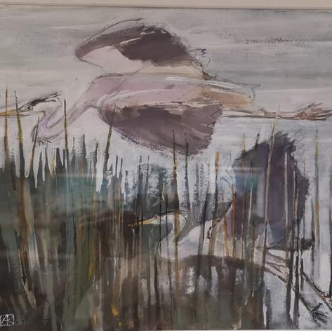 Andrea Kelland