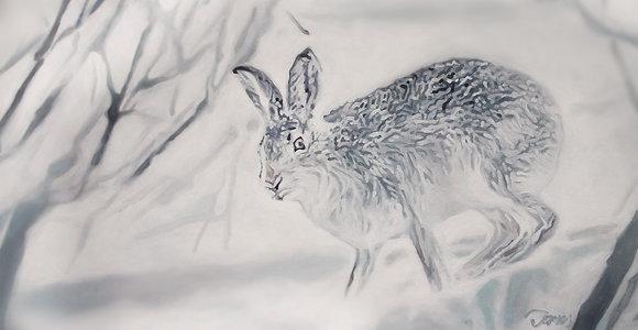 """Rabbit"" Framed Oil by James Summerbell"