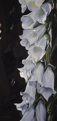 """""""White Foxglove"""" Framed Oil Painting by James Summerbell"""