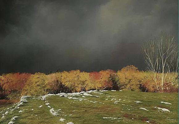 """""""Autumn Storm at Loggerheads""""  - Dave Roberts"""