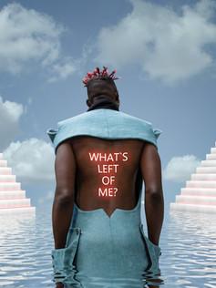 what`s_left_of_me.jpg