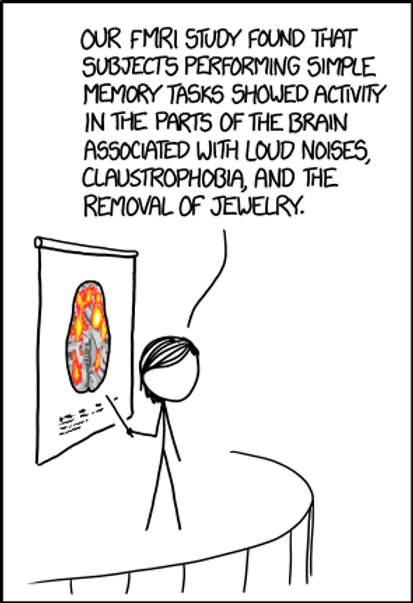 fmri.png