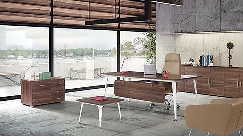 Makam masası, ofis mobilyası, büro mobilyası, ofis koltuğu, büro koltuğu, kitaplık, sehpa, kanepe, müdür koltuğu, büroart