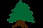lebanon-tree.png