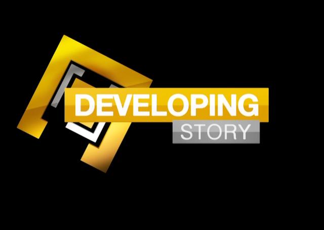 Developing Story logo.png