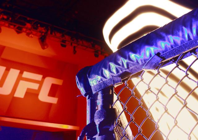 UFC CU Cage Side Angle (0-00-01-28).jpg