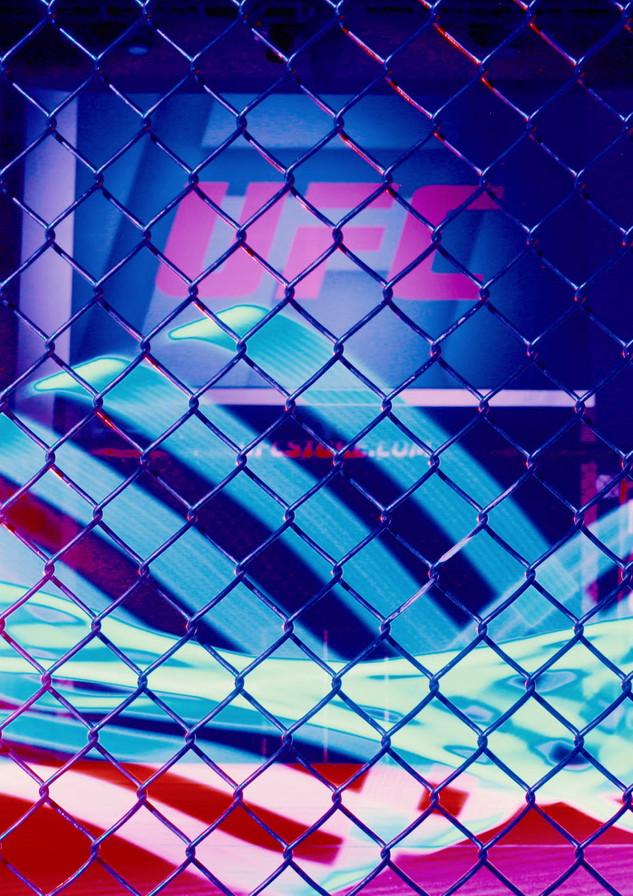 UFC Low Angle CU Cage (0-00-00-00).jpg