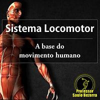 locomotor.jpg
