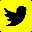 Twitter-Emblem cópia.png