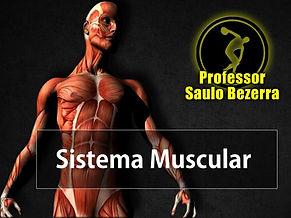 Questoes Muscular 2.jpg