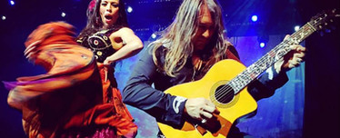 Flamenco and Spanish guitar